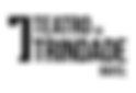 Logo-TT-positivo.png