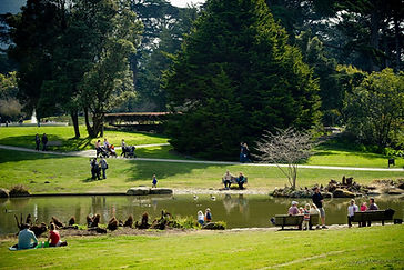 SF_botanical_garden_high_res-300.jpg