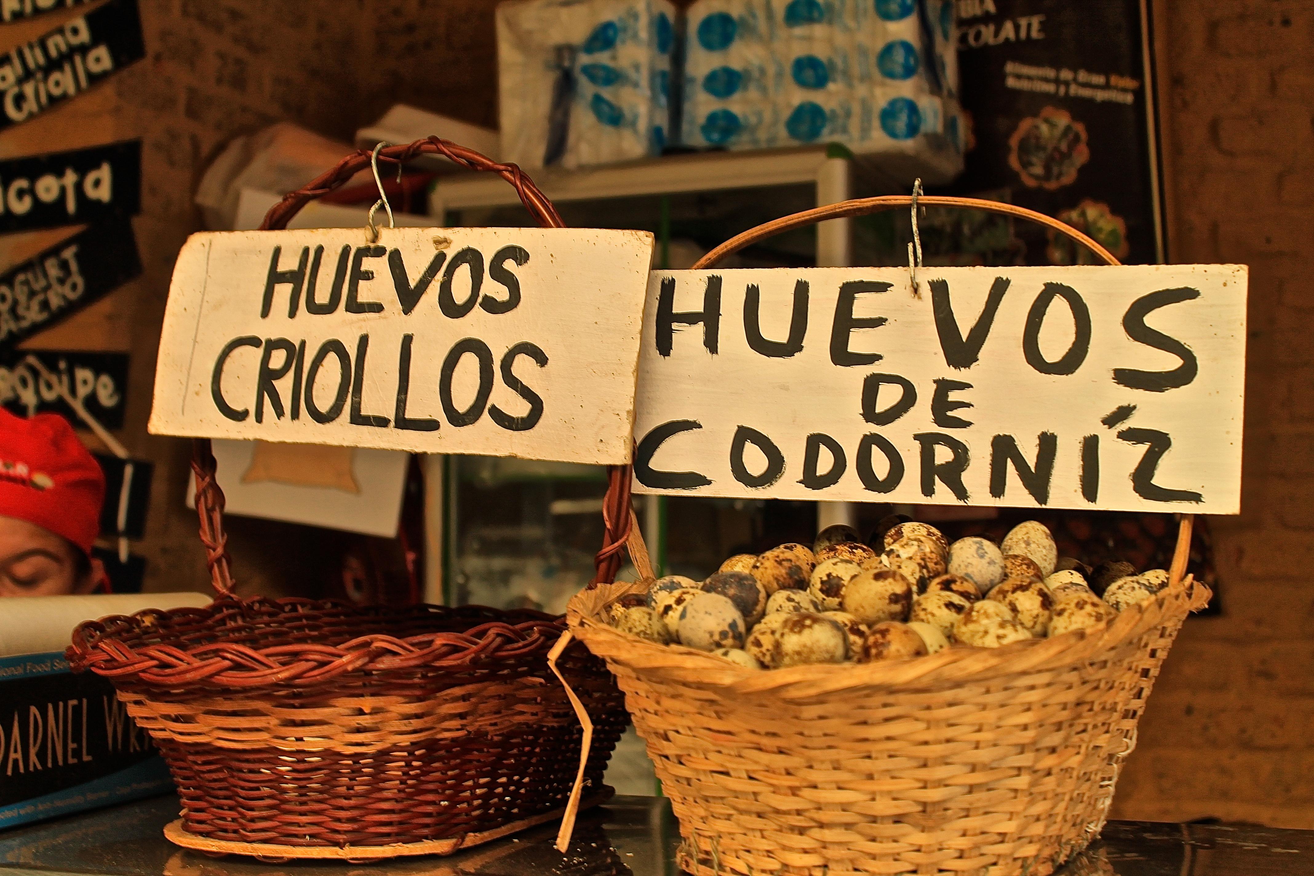 Huevos criollos y de cordorniz