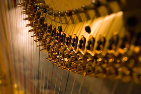 Harp detail.jpg