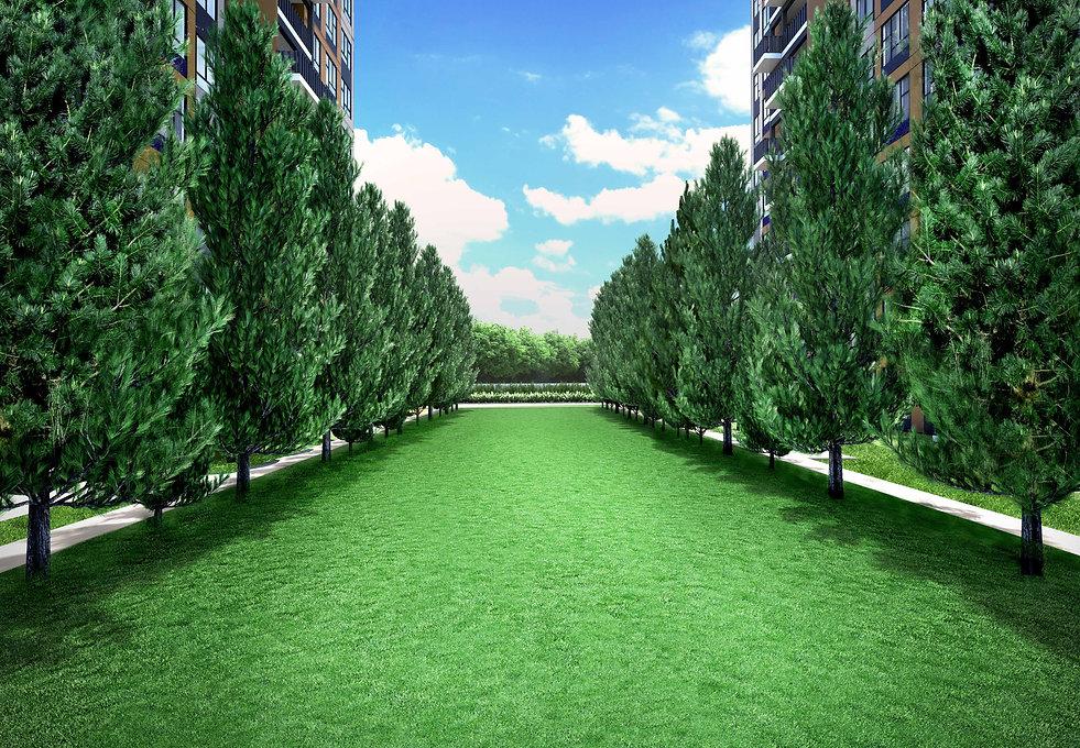 Lawn Vista.jpg