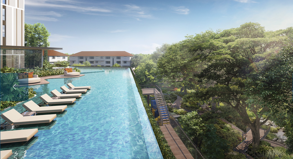 Avenue South Residences Infinity Pool.pn