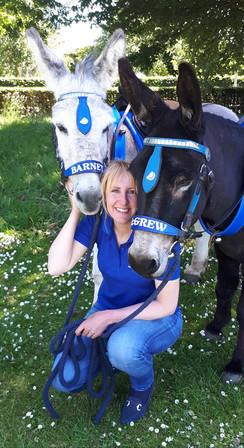Jenny's Donkeys.jpg