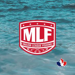 MLF X CSFL