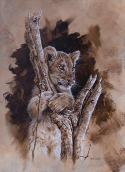 """"""" Mischief"""" Lion Cub"""