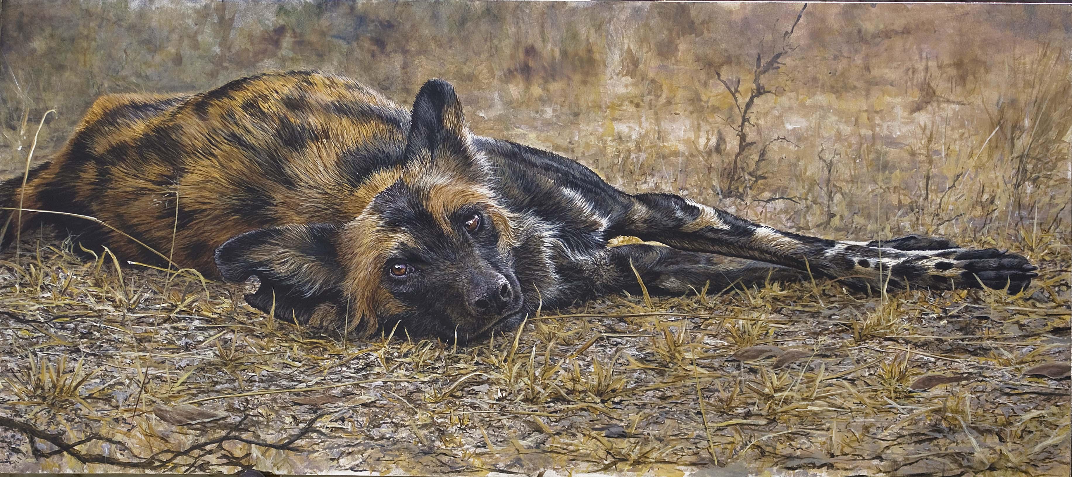 wild dog rw.jpg