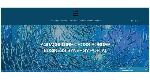 Synergy Site.jpg