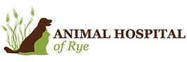 animal-hospital-of-rye.png