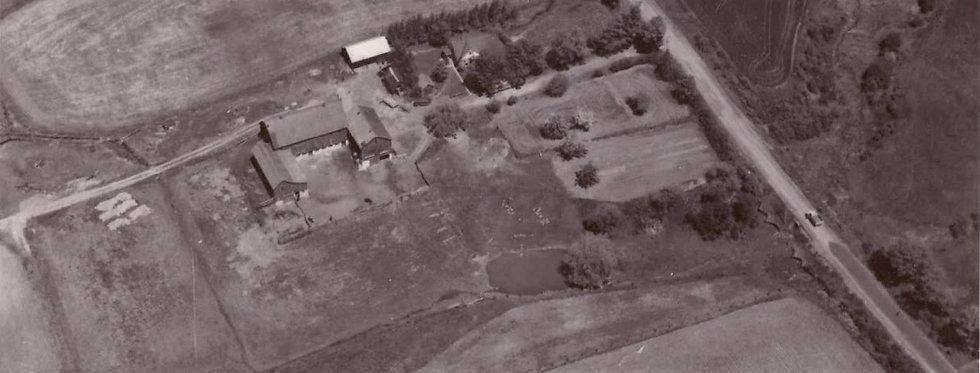 Donnabrook Farm stretch photo.jpg
