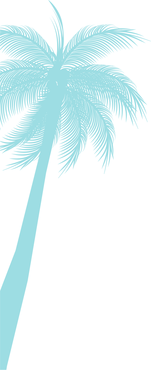 pALM%201_edited.png