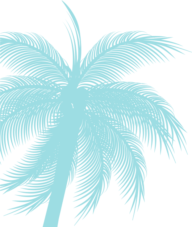pALM%25201_edited_edited.png