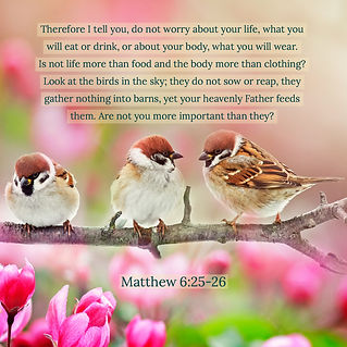 Matt6_25. - Therefore I tell   you....jp