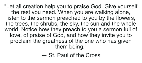St. Paul of the Cross....png