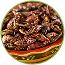 chapulines%20pag_edited.png