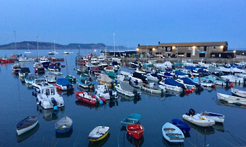 Lyme Bay Harbour