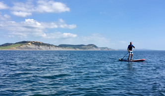 Paddleboard Safari