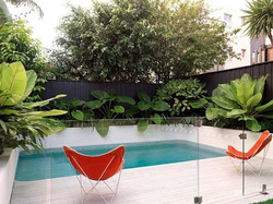 Pool-side Butterfly Chairs