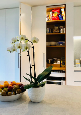 Hide-away pantry