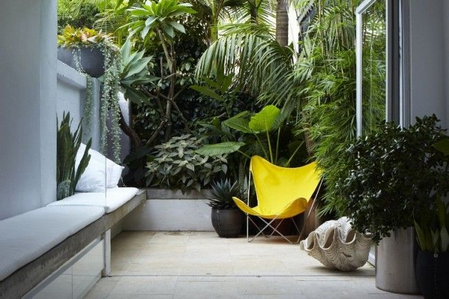 Yellow Butterfly Chair