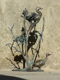 les cormorans sur une branche