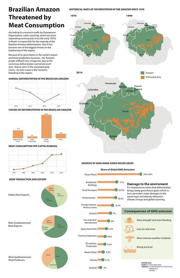 brazil-graphI.jpg