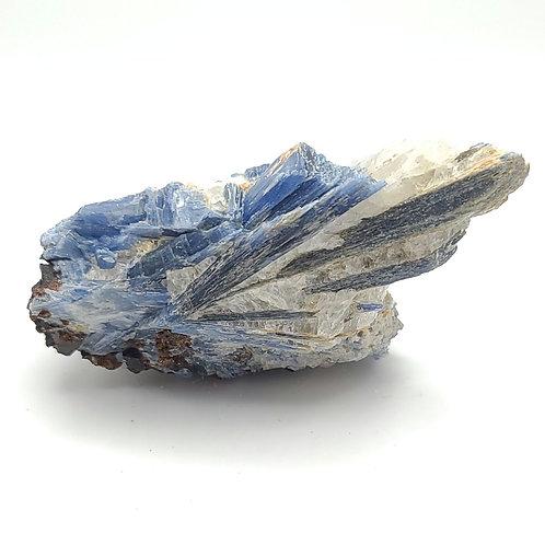 Kyanite with Garnet (F)