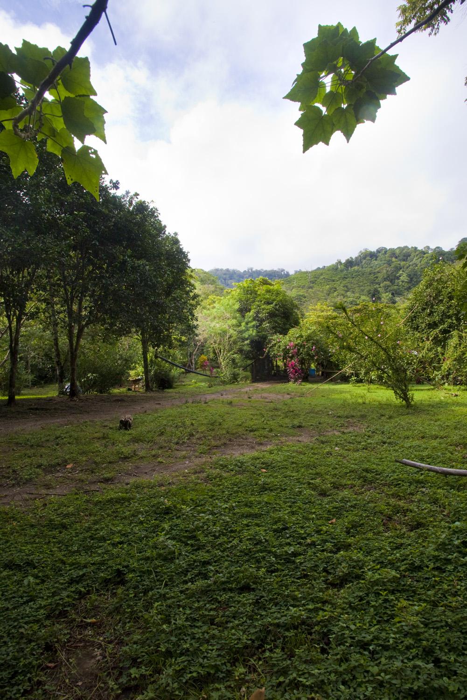 Costa Rica00281.jpg