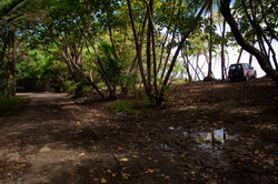 Costa Rica00772-2.jpg