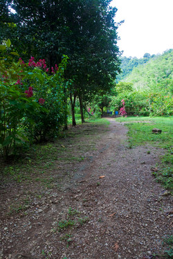 Costa Rica00283.jpg