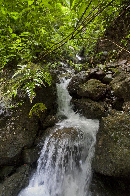 Costa Rica00240.jpg