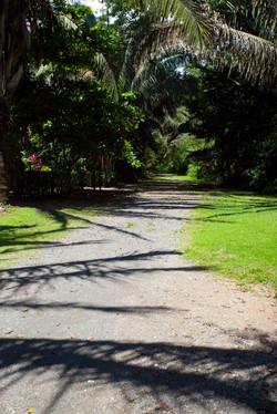 Costa Rica00695.jpg