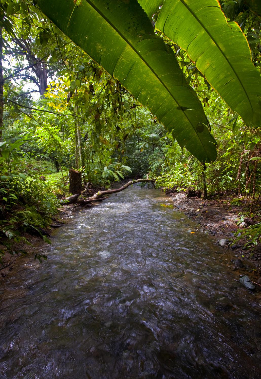Costa Rica00219.jpg