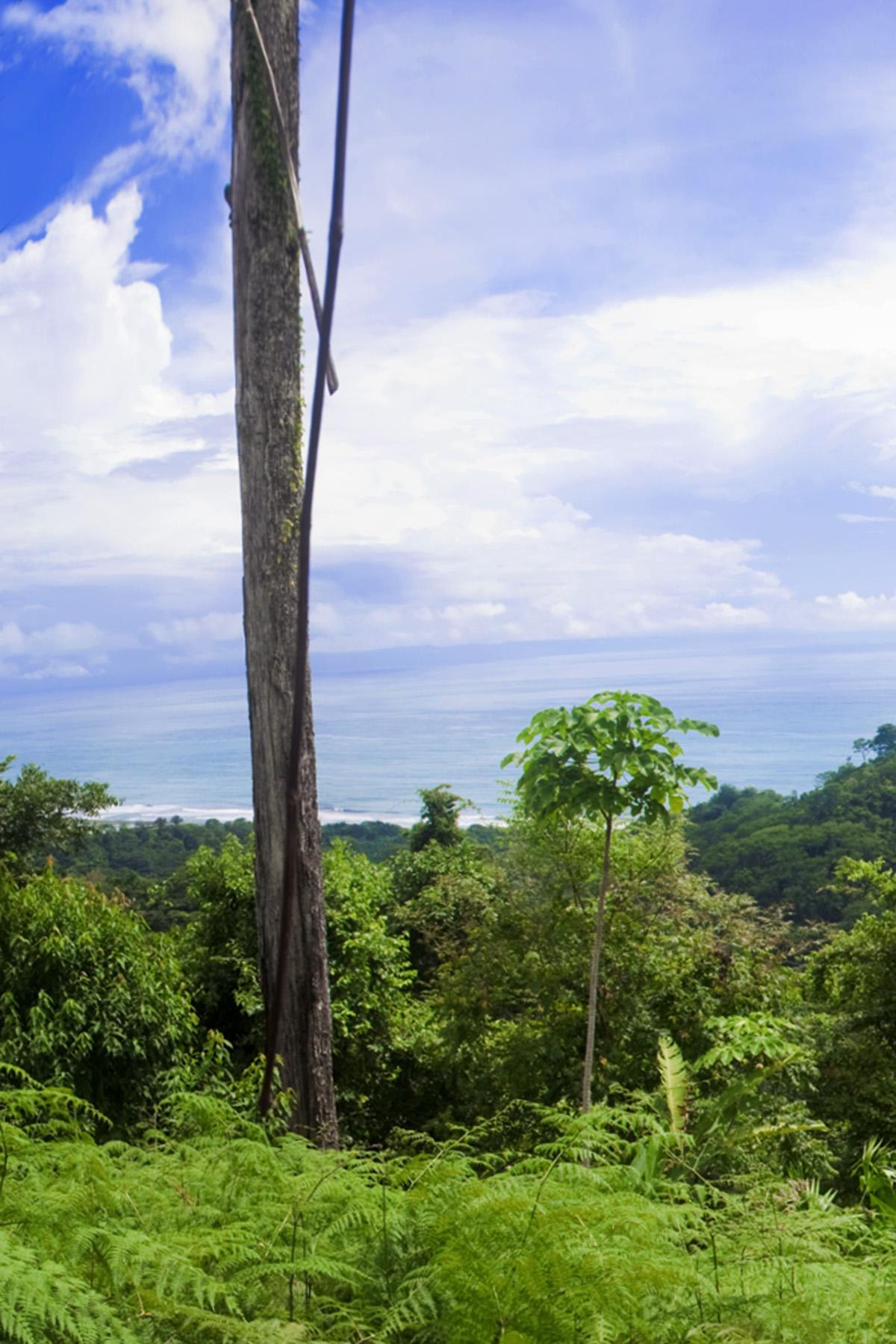 Vista 1 Crop.jpg