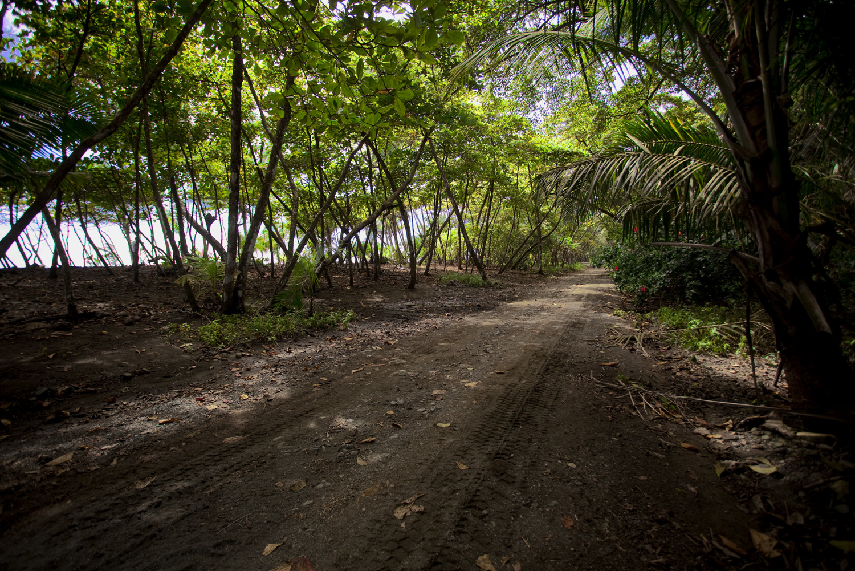 Costa Rica00770-2.jpg
