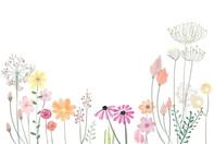 flower-2336287_1280.jpg