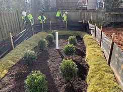 Finishing up a rain garden in Arlington!