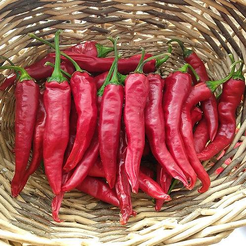 Pepper Korean Hot
