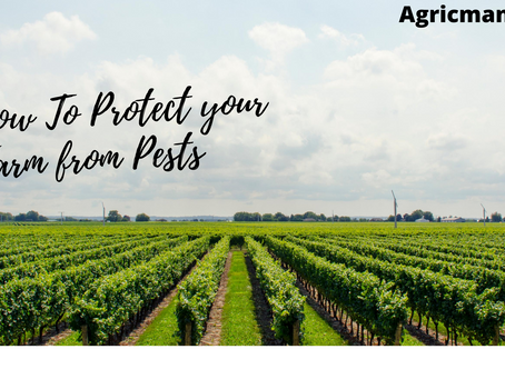 How to protect your Farm from Pests