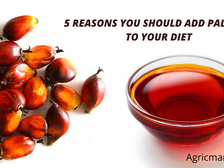 5 Reasons you should add Palm Oil to your Diet