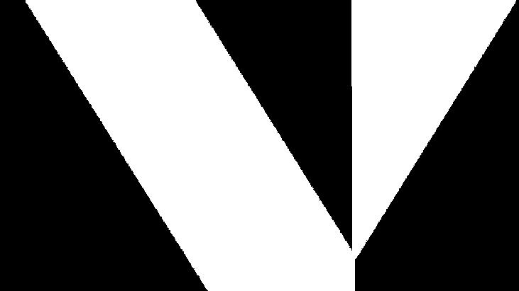 white bg v.png