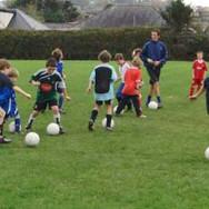 Shear Soccer 11