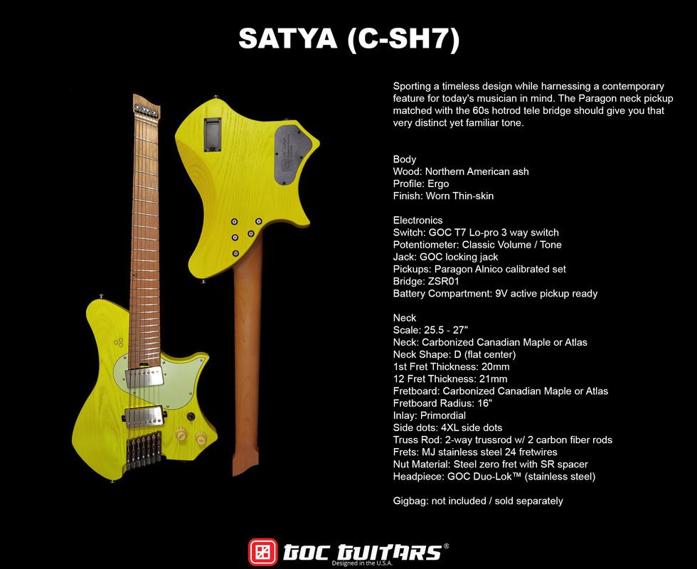 Satya Info.jpg