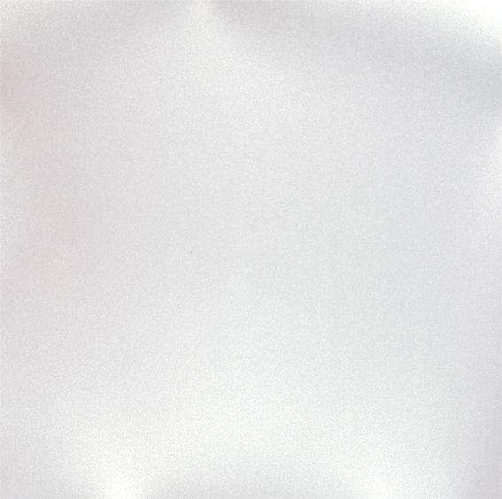 lisa branca