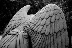 Weeping Angel - Marble
