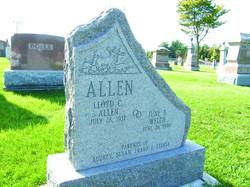 Allen - Rock Margin Edge