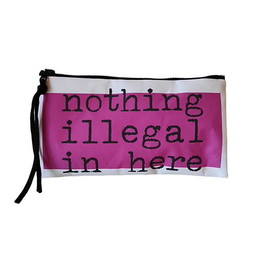 Pochette NOTHING ILLEGAL IN HERE
