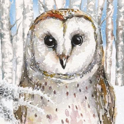 Tovaglioli OWL