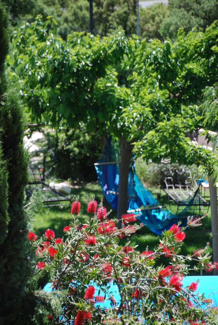 jardin chambres dhotes Aloasis
