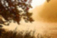 PA River Mist 11X14.jpg