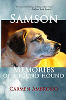 Samson_Cover_for_Kindle REVISED 2018.jpg